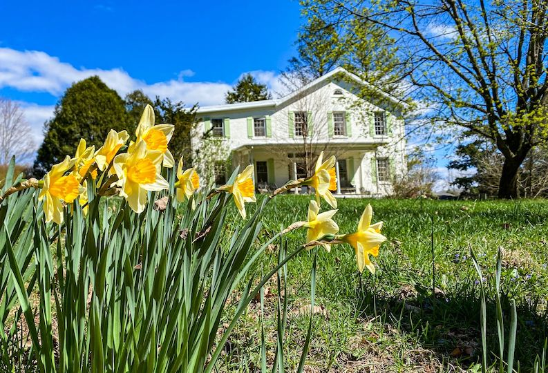 The Homestead Saugerties NY