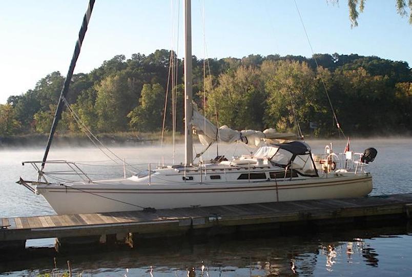 Black Swan Sailing